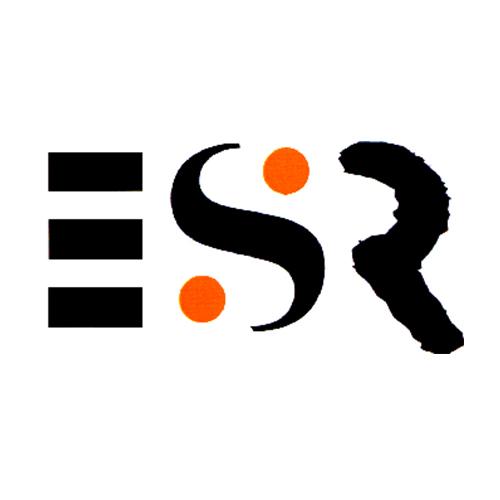 ESR - Evangelische Schüler*- und Schülerinnen*arbeit im Rheinland e.V. Logo